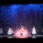 Image courtesy of Von Heidecke's Chicago Festival Ballet